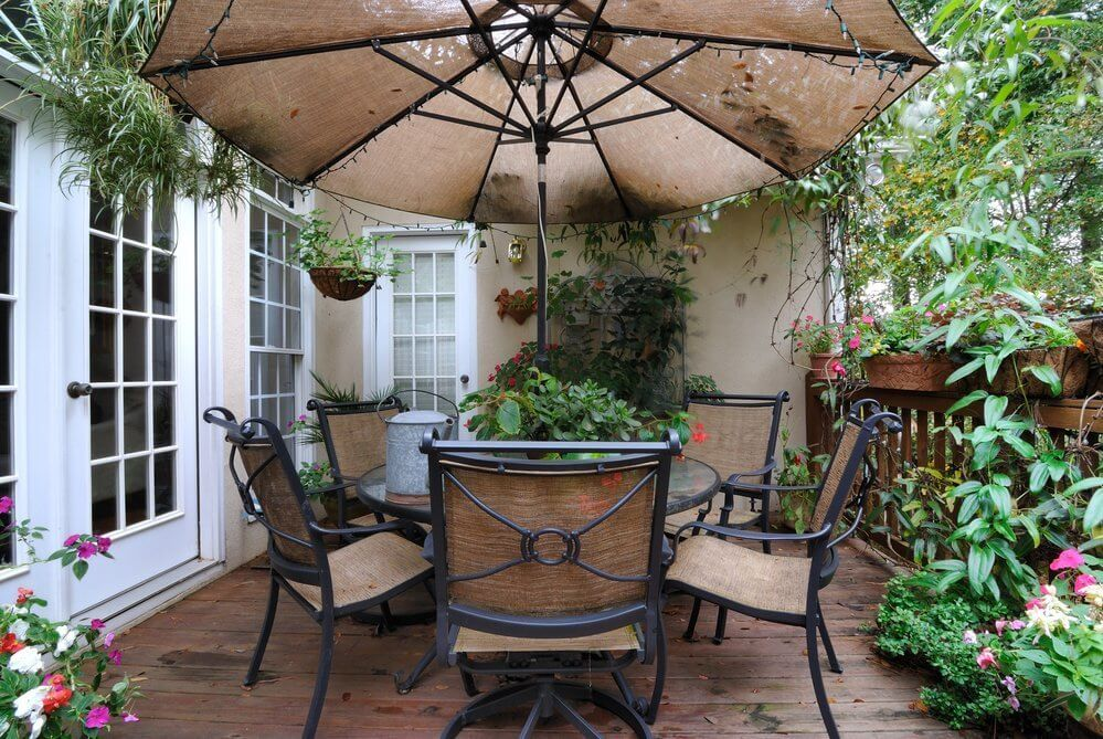 Choosing Plants for Your Deck Space